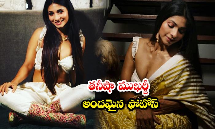 Bollywood stunning beauty Tanishaa Mukerji adorable looks-తనీషా ముఖర్జీ అందమైన ఫోటోలు