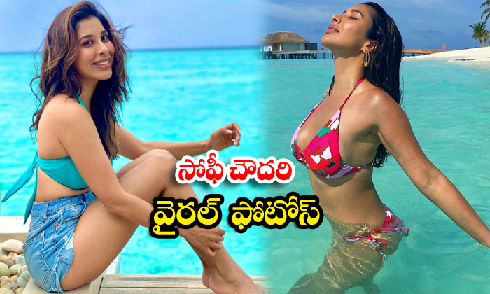 MTV India occasional model sophie choudry beach vacation images-సోఫీ చౌదరి వైరల్ ఫొటోస్