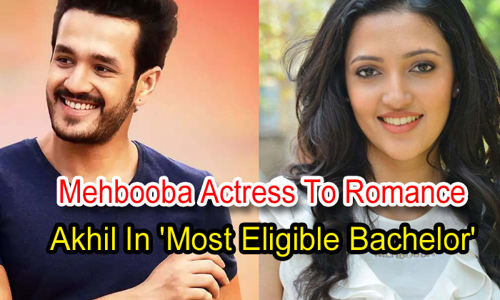 TeluguStop.com - Mehbooba Actress To Romance Akhil In 'most Eligible Bachelor'
