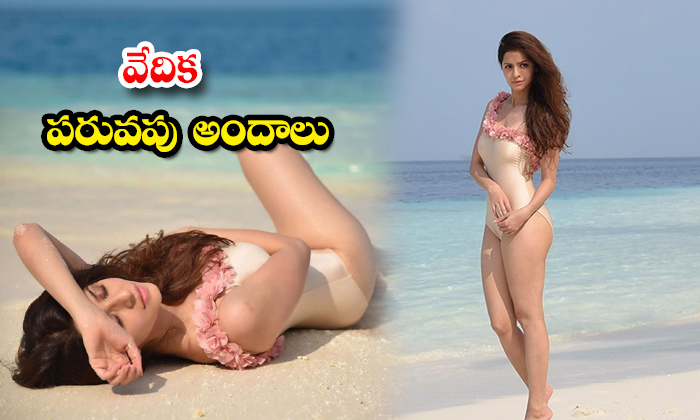 These stunning Beach Stills of Actress Vedhika heads turn on the internet- వేదిక పరువపు అందాలు
