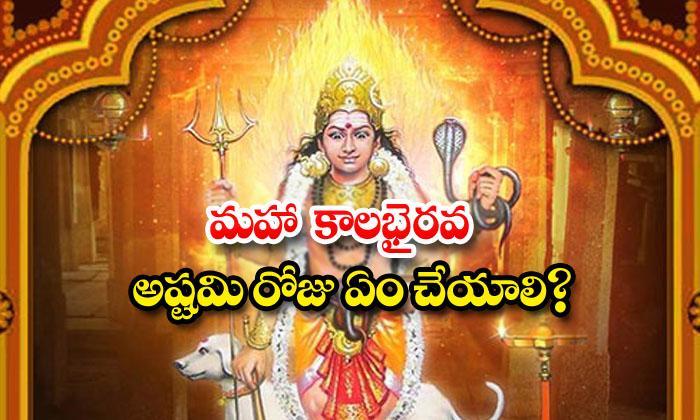TeluguStop.com - What To Do On Maha Kalabhairava Ashtami Day