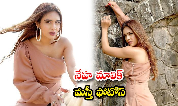 Actress Neha Malik Hot Images-నేహ మాలిక్ మస్తీ ఫొటోస్