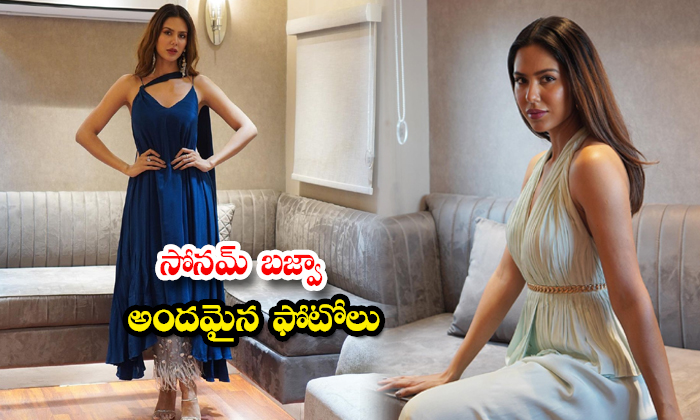 Actress Sonam Bajwa Latest Images-సోనమ్ బజ్వా అందమైన ఫోటోలు