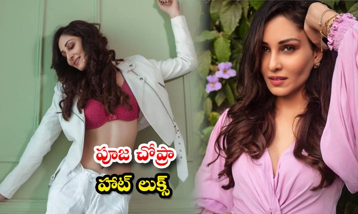 Actress pooja chopra Hot Look images-పూజా చోప్రా హాట్ లుక్స్