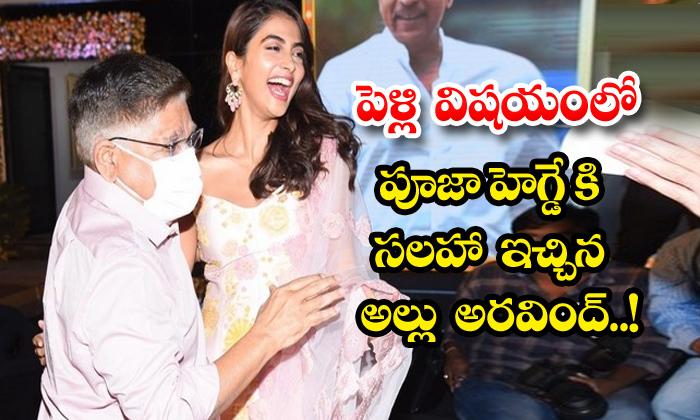 TeluguStop.com - Allu Aravind Advice Pooja Hegde On Marriage