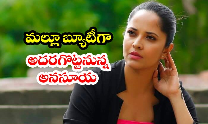 TeluguStop.com - Anasuya To Debut In Malayalam Movies