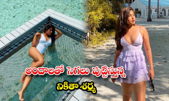 Bold Images of Nikita Sharma at Maldives-అందాలతో సెగలు పుట్టిస్తున్ననికితా శర్మ