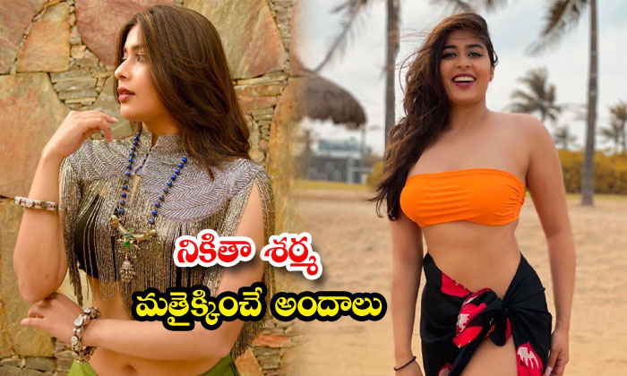 Bollywood bold and Glamorous actressNikitha Sharnacute candid clicks -నికితా శర్మమత్తెక్కించే అ