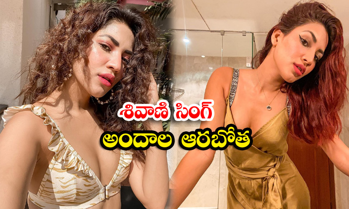 Bollywood model and actress shivani singh mind blowing pictures-శివాణి సింగ్ అందాల ఆరబోత