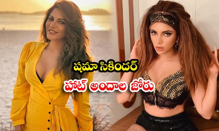 Bollywood stunning actress shama sikander hot poses-షమా సికందర్ హాట్ అందాల జోరు