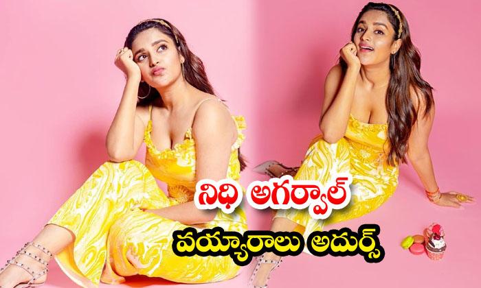 Glamorous Actress Nidhhi Agerwal beautiful HD images-నిధి అగర్వాల్ వయ్యారాలు అదుర్స్