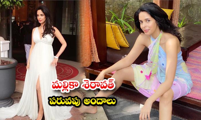 Mallika Sherawat Hot Clicks-మల్లికా శెరావత్ పరువపు అందాలు