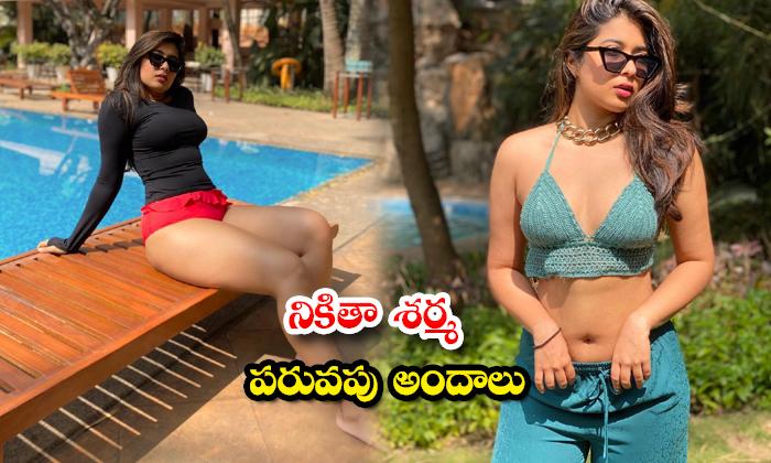 Mind Blowing images of hot Model Nikita Sharma-నికితా శర్మ పరువపు అందాలు