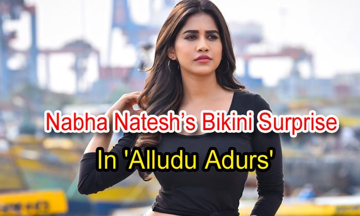 TeluguStop.com - Nabha Natesh's Bikini Surprise In 'alludu Adurs'