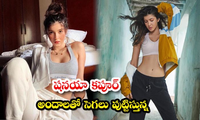 New glamorous pictures of Actress Shanaya Kapoor-షనయా కపూర్ అందాలతో సెగలు పుట్టిస్తున్న