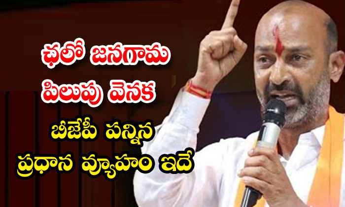TeluguStop.com - This Is The Main Strategy Of The Bjp Behind The Popular