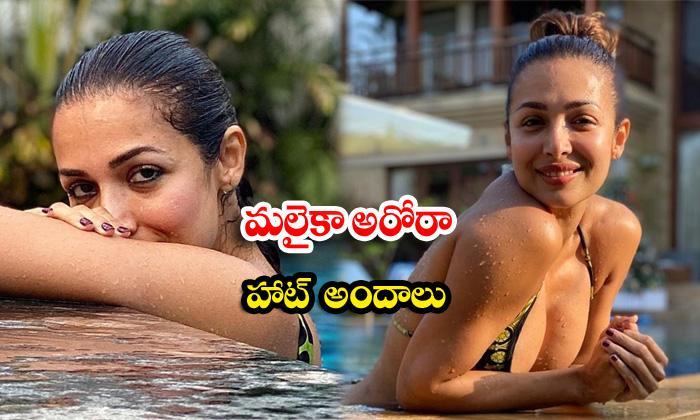 Romantic pictures of bollywood beauty malaika arora-మలైకా అరోరా హాట్ అందాలు