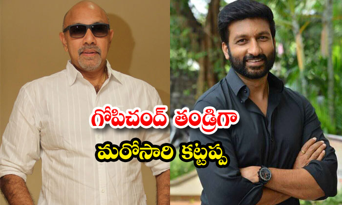 TeluguStop.com - Sathyaraj Play Gopichand Father Role In Maruti Movie