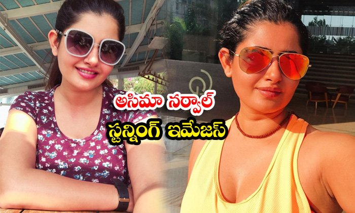 Stunning beauty ashima narwal gorgeous pictures-అసిమా నర్వాల్ స్టన్నింగ్ ఇమేజస్