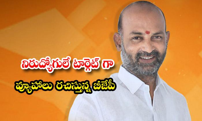TeluguStop.com - The Bjp Is Formulating Strategies To Target The