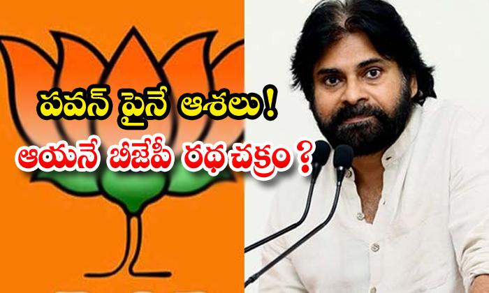 TeluguStop.com - Bjp High Priority On Janasena Chief Pavan Kalyan