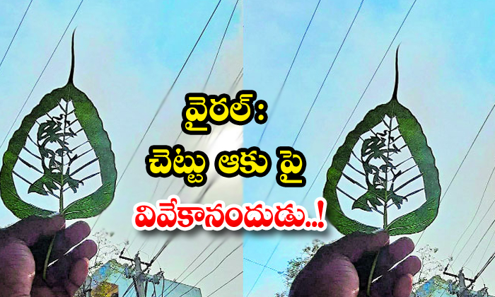 TeluguStop.com - Viral On Tree Leaf He Made Swami Vivekanandas Face