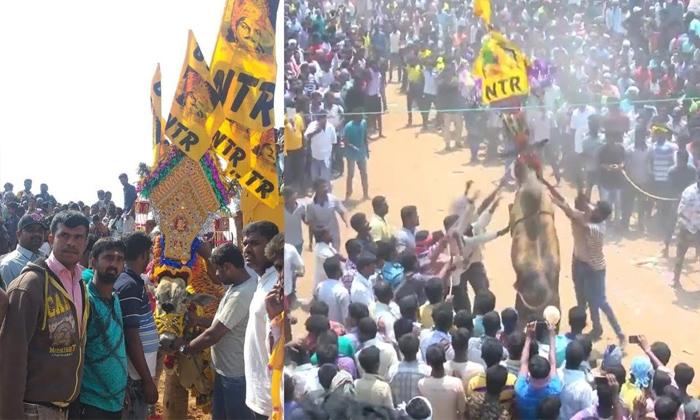 Telugu Jallikattu, Photo Viral, Rrr Movie, Star Hero Ntr, Trivikram Srinivas-Movie