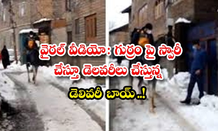 TeluguStop.com - Viral Video Delivery Boy Riding A Horse And Making Deliveries